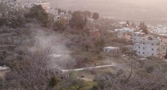 חיילים ניסו למנוע אירוע נטיעות עצים ישראלי-פלסטיני בכפר בורין