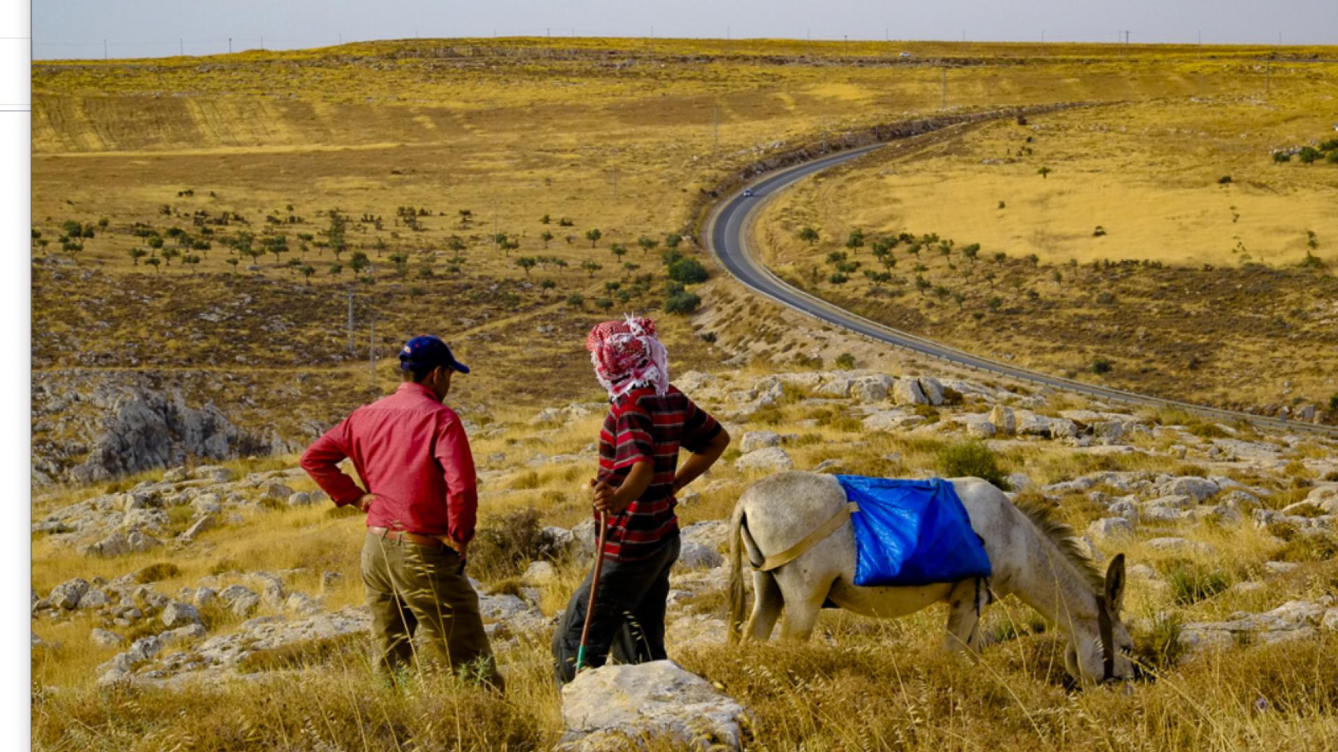 קריאה להתגייסות של פעילי שלום לקציר באדמות הכפר הפלסטיני דיר ג'ריר